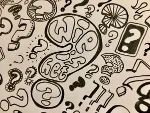 Wie is het - Creatief met taal