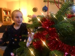 Oudste kerstboom